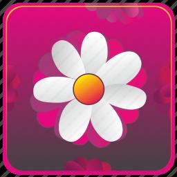 app, flower, mobile icon