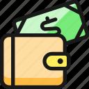 cash, payment, wallet