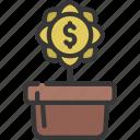 financial, growth, finances, plant