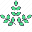 branch, foliage, forest, greenery, leaves, nature, spring icon