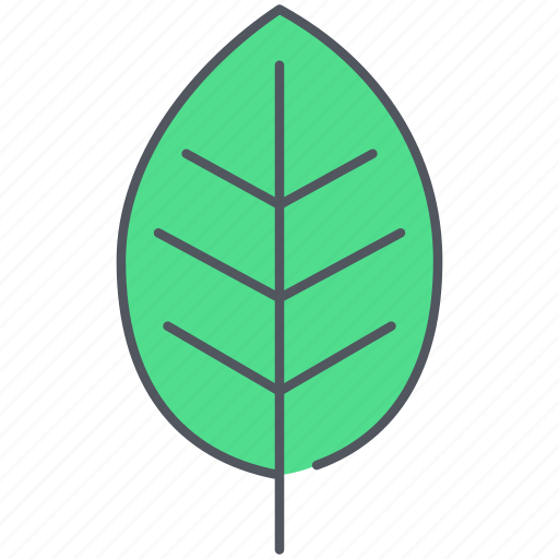 cherry, ecology, foliage, forest, leaf, nature, plant icon