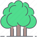 birch, decidious, forest, greenery, nature, oak, trees icon