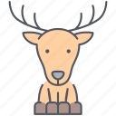 deer, animal, forest, nature, north, reindeer, xmas icon
