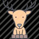 deer, animal, forest, nature, north, reindeer, xmas