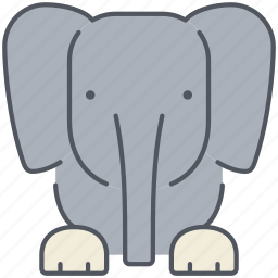 african, animal, elephant, forest, jungle, safari, specie icon