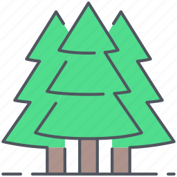 cedar, evergreen, fir, forest, nature, pine, trees icon