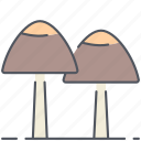 autumn, forest, fungi, fungus, mushrooms, nature, plant icon