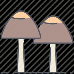 autumn, forest, fungi, fungus, mushrooms, nature, plant icon
