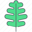 environment, foliage, forest, leaf, nature, oak, spring icon