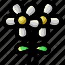 bouquet, decoration, floral, flower, garden, gardening, nature