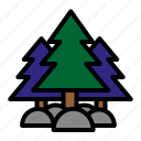 camping, forest, mountain, pine trees