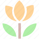 abstract, audio, flower, leaves, multimedia, music, photography icon