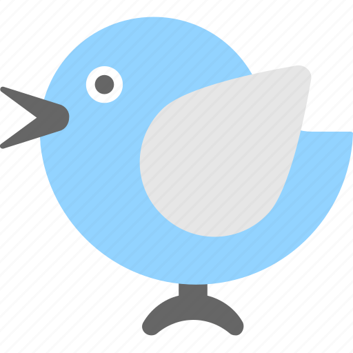 bird, network, social, social media, twitter icon
