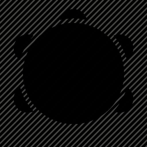 audio, instrument, music, percussion, song, tambourine icon