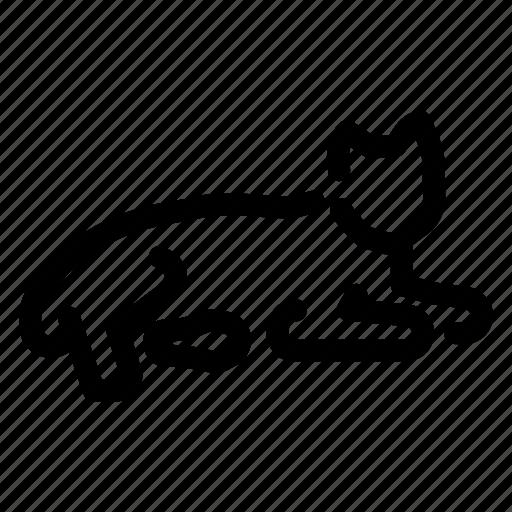 Cat, pet, animal icon - Download on Iconfinder on Iconfinder