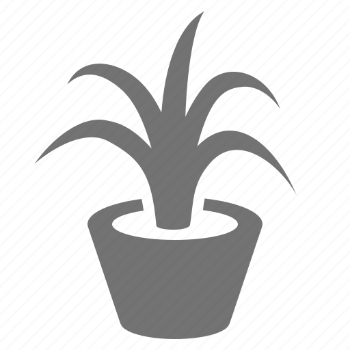 decoration, gardening, leaf, nature, plant, potted icon