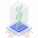 biology, biotechnology, dna, dna molecules, dna strand, genetic structure, heredity icon