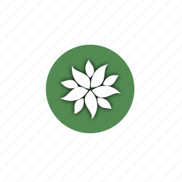 biology, design, eco, flower, leaves, life, nature icon