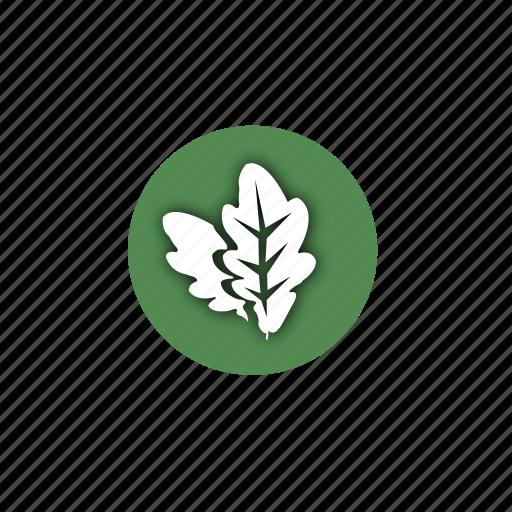 design, eco, leaf, leaves, life, natural, nature icon