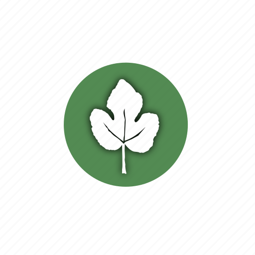 design, eco, leaf, leaves, life, natural, nature icon