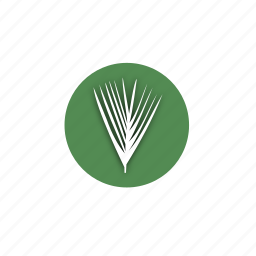 biology, design, eco, fan, leaves, nature, tropical icon