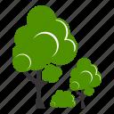 green, greenary, natural, naturally, environment, leaf