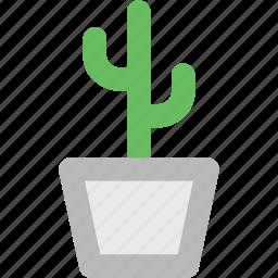 cactus, cactus in pot, desert, garden, gardening cactus, leaves, yard icon