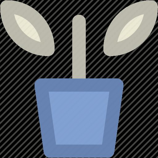 flowering plant, greenery, nature, plant, plant pot, pot icon