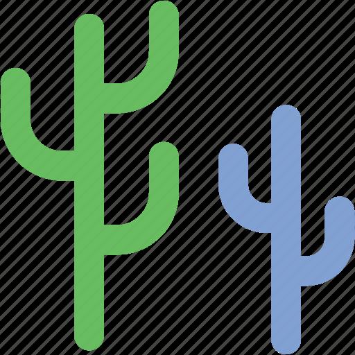 cactaceae, cactus, cactus plant, cactus tree, generic tree icon