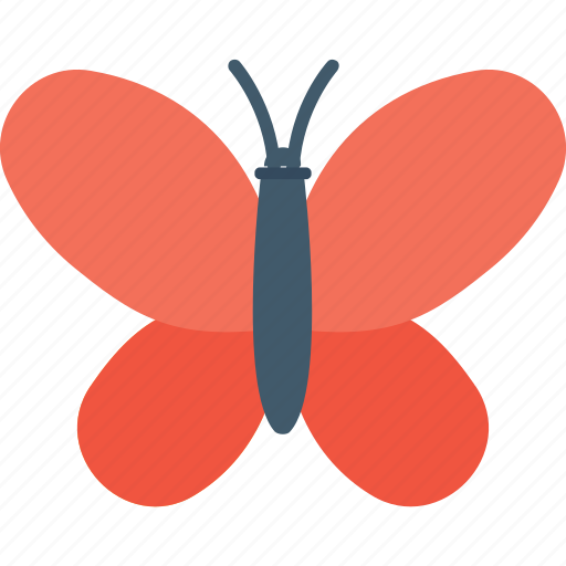 Butterfly, insect, moth, nature, spring icon - Download on Iconfinder
