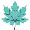 autumn, foliage, leaf, maple leaf, nature icon