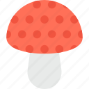 food, fungi, healthy, mushroom, toadstool icon