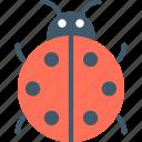beetle, insect, ladybeetle, ladybird, ladybug icon