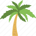 beach, nature, palm, summer, tree