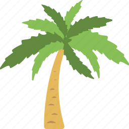 beach, nature, palm, summer, tree icon
