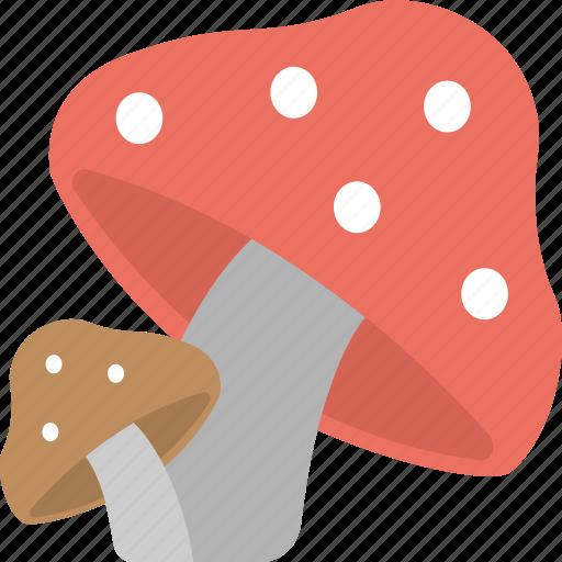 food, fungi, mushroom, nature, toadstool icon