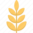 gluten, grain, rye, wheat, wheat ear icon