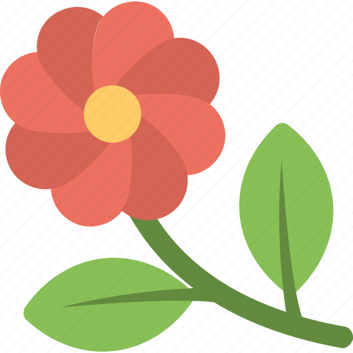 Blossom, daisy, floral, flower, nature icon - Download on Iconfinder