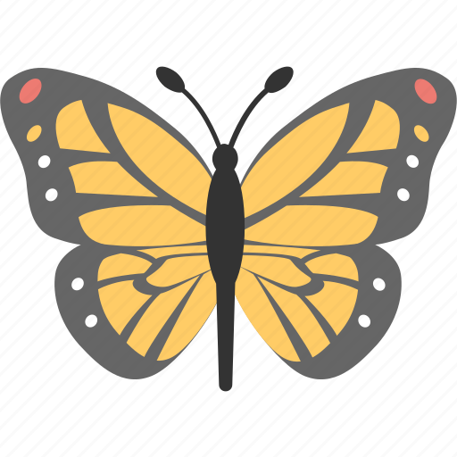butterfly, insect, moth, nature, spring icon
