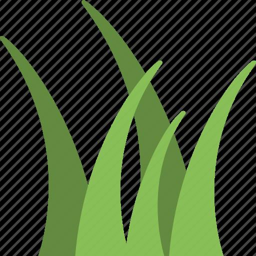 grass, lawn, meadow, turf, yard icon