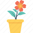 flower sapling, foliage, leaves, plant, seedling icon