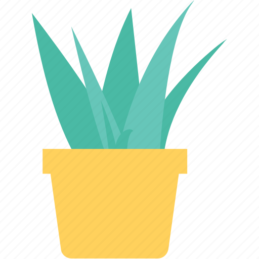 grass plant, grass pot, green, sod, turf icon