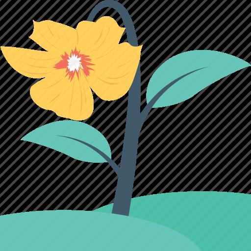 beauty, flower, spring flower, tulip, tulip bud icon