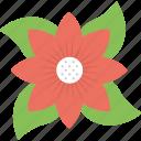 bloom, blossom, bud, buttercup, flower