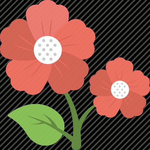 Anemone, bloom, flower, nature, spring icon - Download on Iconfinder