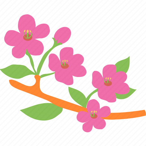 blossom, daisy, floral, flower, nature icon