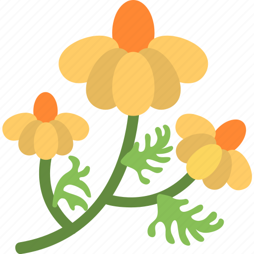 Amaryllis, beauty, floral, flower, nature icon - Download on Iconfinder