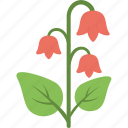 blossom, floral, flower, nature, tulip icon