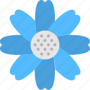 spring, flower, bloom, anemone, nature icon