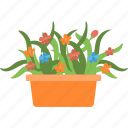 flower, garden, plant, pot, yard
